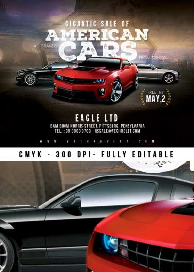 Us American Car Sale Flyer Template download