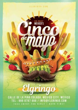 Mexico Cinco De Mayo Celebration Flyer Template